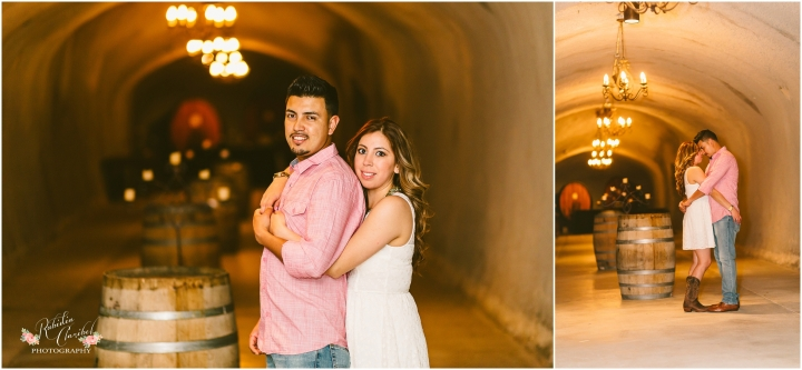 Rubidia C Photography Oakland Bay Area Livermore Wente Engagement Walnut Creek Stockton Wedding Photographer CA_0334.jpg