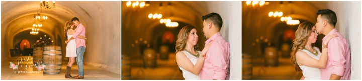 Rubidia C Photography Oakland Bay Area Livermore Wente Engagement Walnut Creek Stockton Wedding Photographer CA_0335.jpg