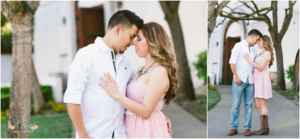 Rubidia C Photography Oakland Bay Area Livermore Wente Engagement Walnut Creek Stockton Wedding Photographer CA_0343.jpg